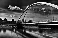 bridge halifax