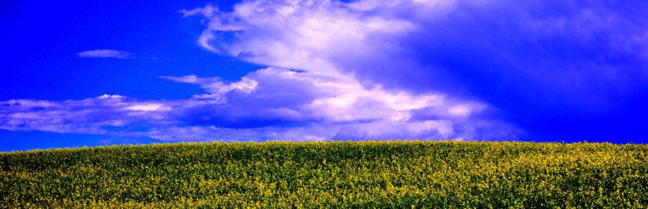 blue sky, photo
