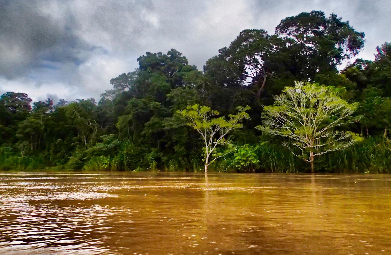 rio, photo